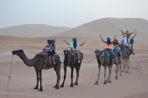 Camel Trek Bivouac, Luxury tents  Merzouga - big - 20
