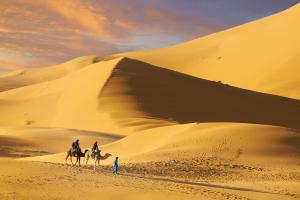 Camel Trek Bivouac, Luxury tents  Merzouga - big - 19