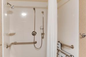 Queen Room Mobility/Hearing Accessible with Roll In Shower - Non-Smoking
