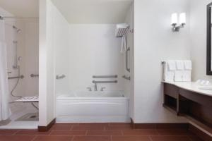 King Accessible Room with Bathtub