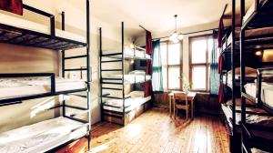 Bunk Bed in 12-Bed Mixed Dormitory
