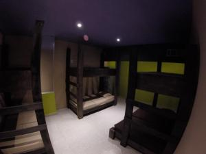 Bunk Bed in Mixed Dormitory Room 6 persons