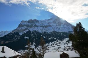 Apartment Delta 4.5 - GriwaRent AG, Appartamenti  Grindelwald - big - 5