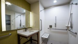 Deluxe King Room with Bath Tub - Handicap Access/Non-Smoking