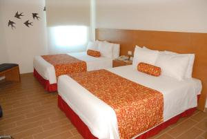 Executive Room - 2 Double Beds