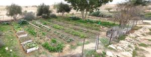 Photo of Matnat Desert Farm