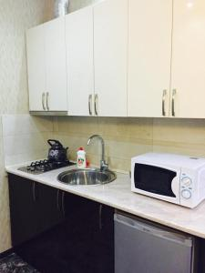 Studio Apartment Pekini 20, Apartmány  Tbilisi City - big - 4