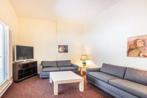 Deluxe Three-Bedroom Apartment