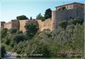 Affittacamere Artemisia, Bed & Breakfast  Magliano in Toscana - big - 25