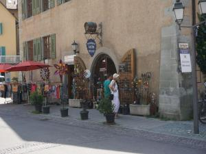 Pension Ins Fischernetz, Guest houses  Meersburg - big - 29