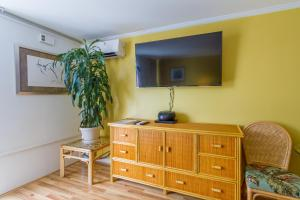Tropical Studio with Queen bed and Sofa sleeper ( 6 )