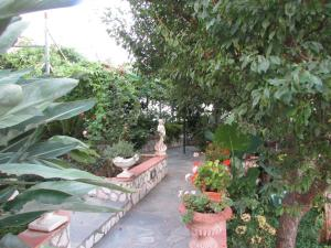 B&B Palazzo a Mare, Bed and breakfasts  Capri - big - 42