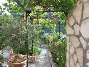 B&B Palazzo a Mare, Bed & Breakfasts  Capri - big - 22