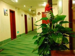 Greentree Inn Beijing Miyun Xinzhong Street Business Hotel, Hotely  Miyun - big - 13