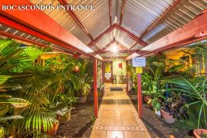 Photo of Bocas Condos Rentals