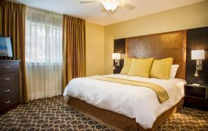 One-Bedroom Suite With 1 Bed