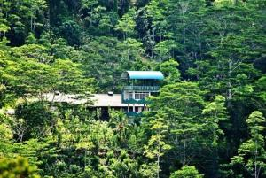Photo of Gilbys Bungalow