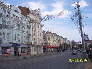 Gostevoy Apartment, Affittacamere  Vinnytsya - big - 103