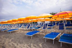 Hotel Daisy, Hotely  Marina di Massa - big - 84