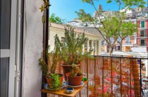 Apartment Constituci�