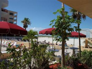 #119 At Surf Song Resort, Apartments  St Pete Beach - big - 11