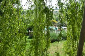 Agriturismo QuartoPodere, Farm stays  Magliano in Toscana - big - 31