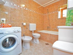 Holiday Home Lorena, Дома для отпуска  Tinjan - big - 14
