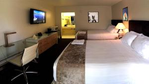 Superior Double Room with Two Queen Beds
