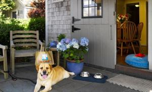 One-Bedroom Cottage - Pet Friendly