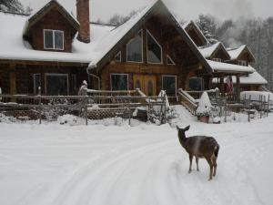 Photo of Powder Creek Ranch Bed And Breakfast