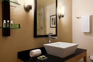Standard King Suite - Handicap Accessible