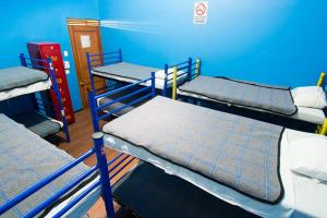Single Bed in Mixed Dormitory Room (10 Beds)