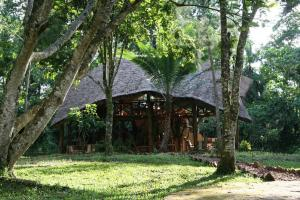 Photo of Kibale Forest Camp