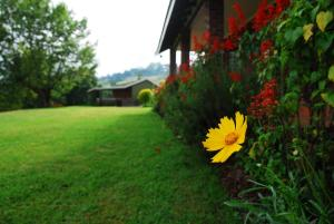 Photo of Chillifields Guesthouse