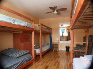 Single Bed in 6-Bed Female Dormitory Room