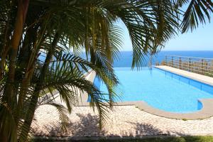 Villa Camacho XI - Sea Haven, Ville  Arco da Calheta - big - 1
