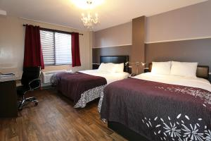 Superior Room with One Queen and One Double Bed
