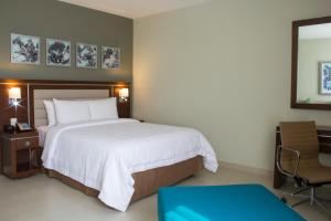 Hampton Inn by Hilton Villahermosa, Hotels  Villahermosa - big - 20