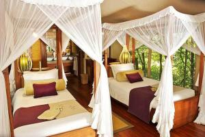 Photo of Mara Intrepids Tented Camp