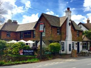 Best beech inn in Wadhurst, East Sussex, England