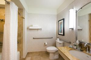 Queen Suite Accessible with Roll In Shower- Non-Smoking