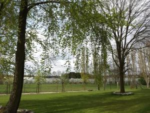 B&B Johannes-Hoeve, Bed & Breakfast  Baarlo - big - 98