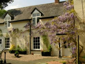 Plas Efenechtyd Cottage B&B in Ruthin, Denbighshire, Wales