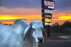 Korte's Resort, Rezorty  Rockhampton - big - 37
