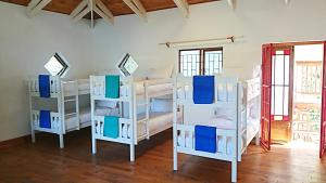 Single Bed 16-Bed Dormitory Room
