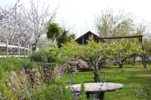 Agriturismo Dolcetna, Country houses  Sant'Alfio - big - 53