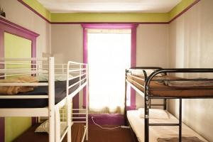Bed in 8-Bed Female Dormitory Room with Shared Bathroom