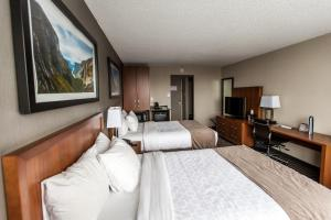 Double Room with Two Double Beds and City View