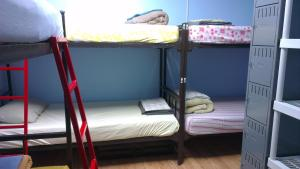 Bed in Male Dormitory Room with Shared Bathroom