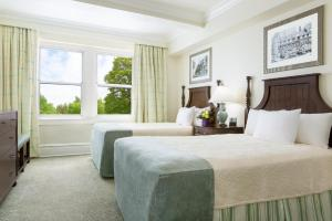 Room with Two Double Beds - Spruce Lodge-Pet Friendly